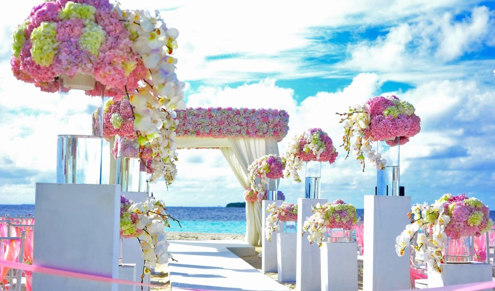 5 Stunning Wedding Venues Just Outside San Francisco Color Labs