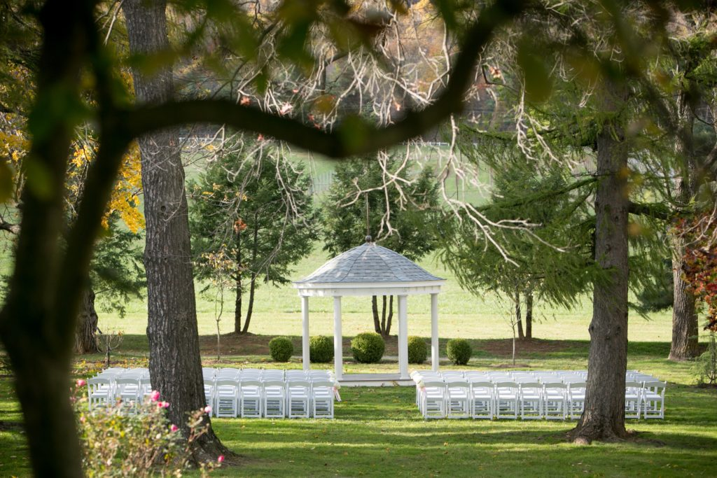 wedding in beautiful garden