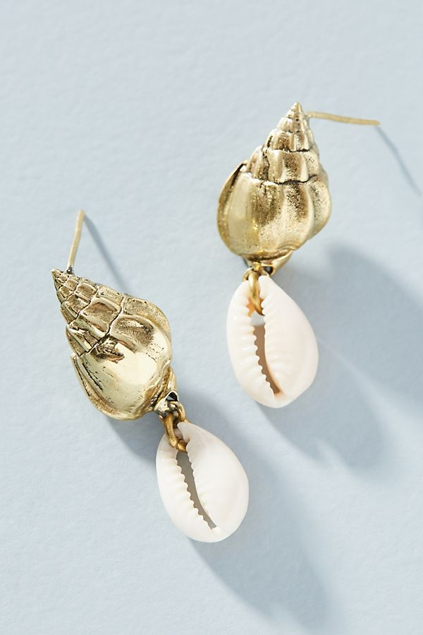 Shell Accents